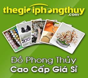 Banner-The-Gioi-Phong-Thuy